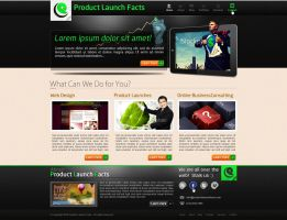Product Launch Facts by bojok-mlsjr