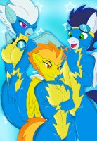 Wonderbolts, smile by AlexFur02