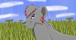 Second Place Prize for DJShaydez by SolitaryGrayWolf