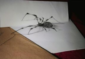 Spider 3D by LucasFerreir4