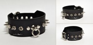Spiked collar by leatherforfun