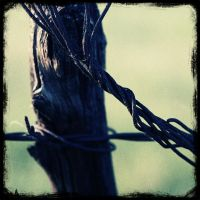 Fence Post with Barbed Wire by deadlanceSteamworks