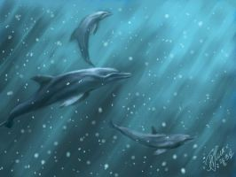 Dolphins by kichinez