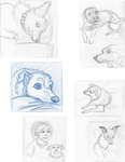 Dailies- My Dogs by TangerineVampire