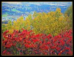 Autumn Colours By The Village by JocelyneR