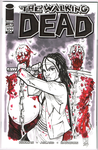 The Walking Dead 109 Variant: Michonne by Hodges-Art