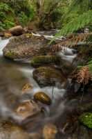 Mountain Creek by MarkLucey
