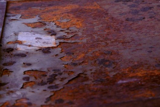 From Grey to Rust by Pandagirl3000