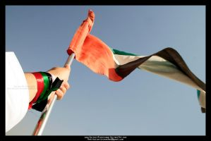 UAE 6 by Sultan-Almarzoogi