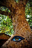 My eye on you by Angelhand