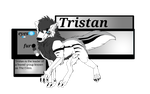 Tristan ref and bio by RogueWolf44