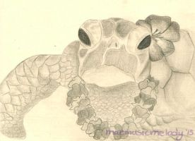 Turtle by MaeMusicMelody