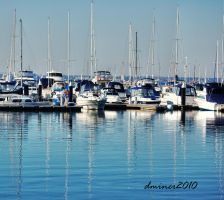 Yachts at Williamstown by DanielleMiner