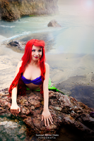 The Little Mermaid by Samathecat-in