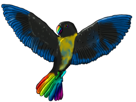 DarkPirateRule : Midnight Rainbow by AdoptablePie