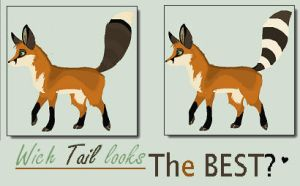 Wich Tail looks the best? by Kanbhik