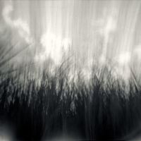 Pinhole Dreams III by PoLazarus2