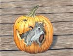 Halloween Squirell by kad-portraits