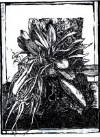 Naturalesa Central Panel by gromyko