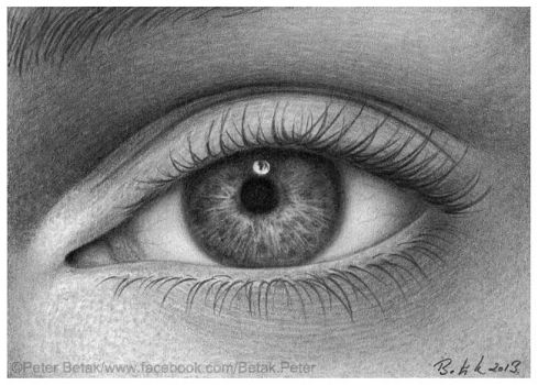 EYE miniature (ACEO) drawing by petbet1