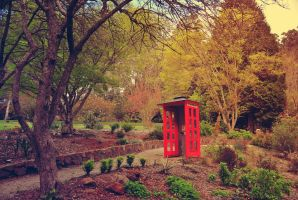 Little Red Telephone Booth by StephUnplugged
