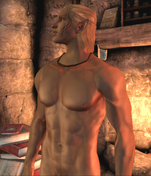 Zevran by the fire by TMcGeeSDCA
