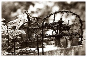 barbwire defense by psychodelic-candy