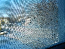 frost in the window by Callie6446