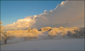 More Snow Scenes I by sags