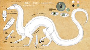 Tom as eastern dragon - reference by Aniusia483