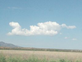 narwal cloud by booklover33