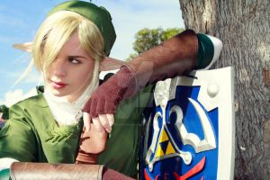 Link by fae-photography