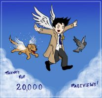 20000pv - THANK YOU by blackbirdrose