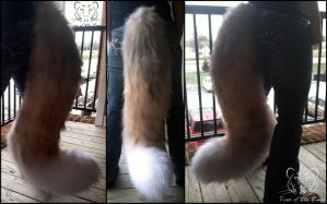 Commission - Rough Collie Tail by TigeroftheWinds