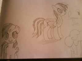 Rainbow Dash Sketches by eeveefan300