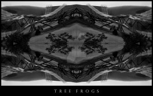 Tree Frogs by kyusuke