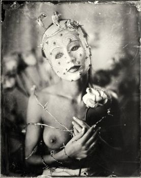 Rose, ambrotype by Edward-Jekyll