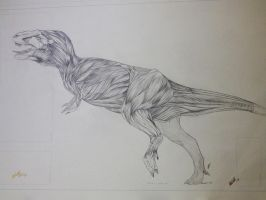 T-rex in motion muscle study. by Lord-FurFur