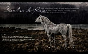Stand In the Rain by AFrozenMoment