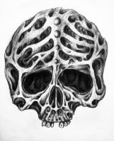 Skull sketch by bobby79
