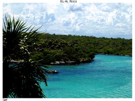 A Day at Xel-Ha by gray929