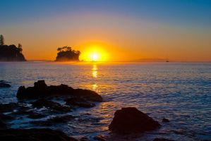 Waiake Sunlight by SadisticVeneer