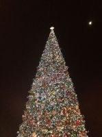 Disneyland Christmas Tree by firegirl1995
