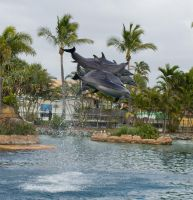 STOCK - Seaworld 2013-82 by fillyrox