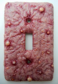 diseased switch plate by dogzillalives