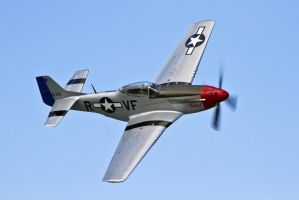 Doug Matthew's P-51D by OpticaLLightspeed