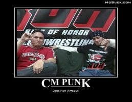 CM Punk Does Not Approve by xStraightEdgexPunkx