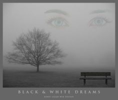 Black and White Dreams by cezars