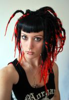 black and red transitionals by we-will-break
