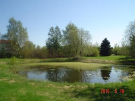 Spring pond 1 by vonderwall